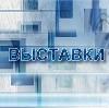 Выставки в Богдановиче
